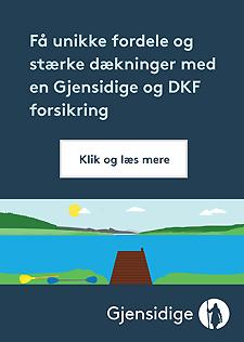 Gjensidige_DKF_banner_225x316_aug16